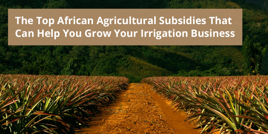 African Agriculture Subsidies